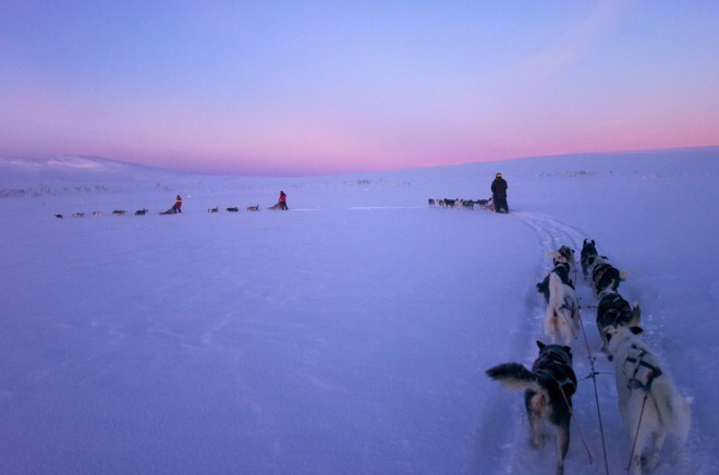 Dog Sledding | Mini moon In Sweden | Ultimate Wedding Magazine