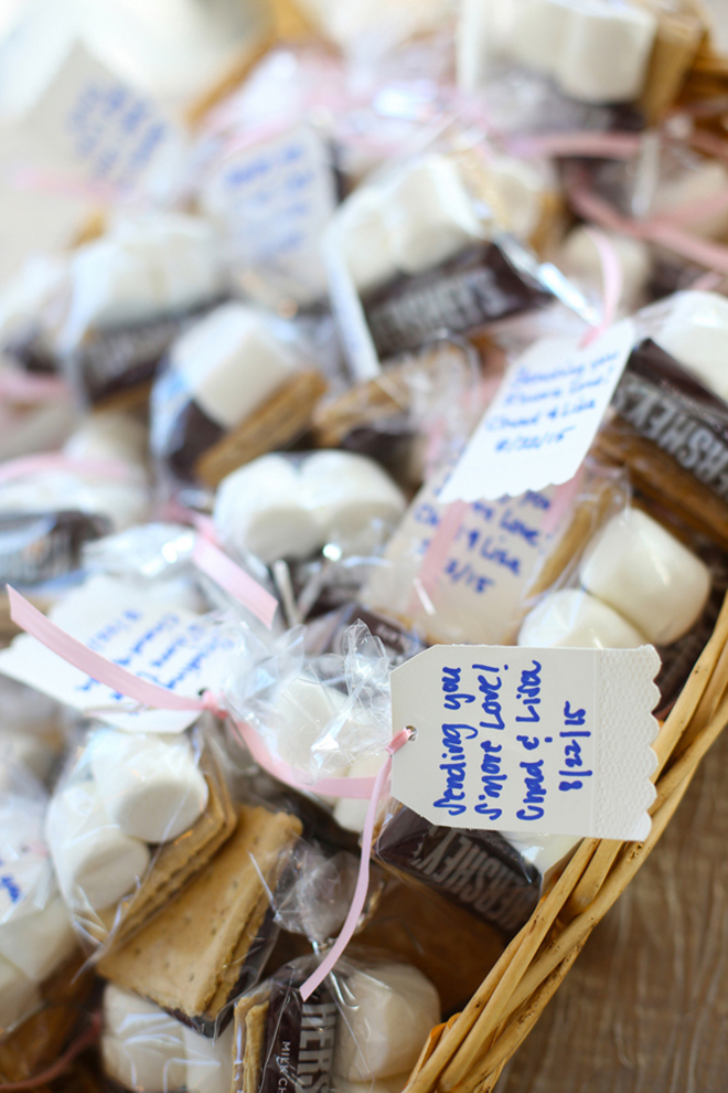 Wedding Smores | Canada joins USA on Lake Erie | Blue Martini Photography