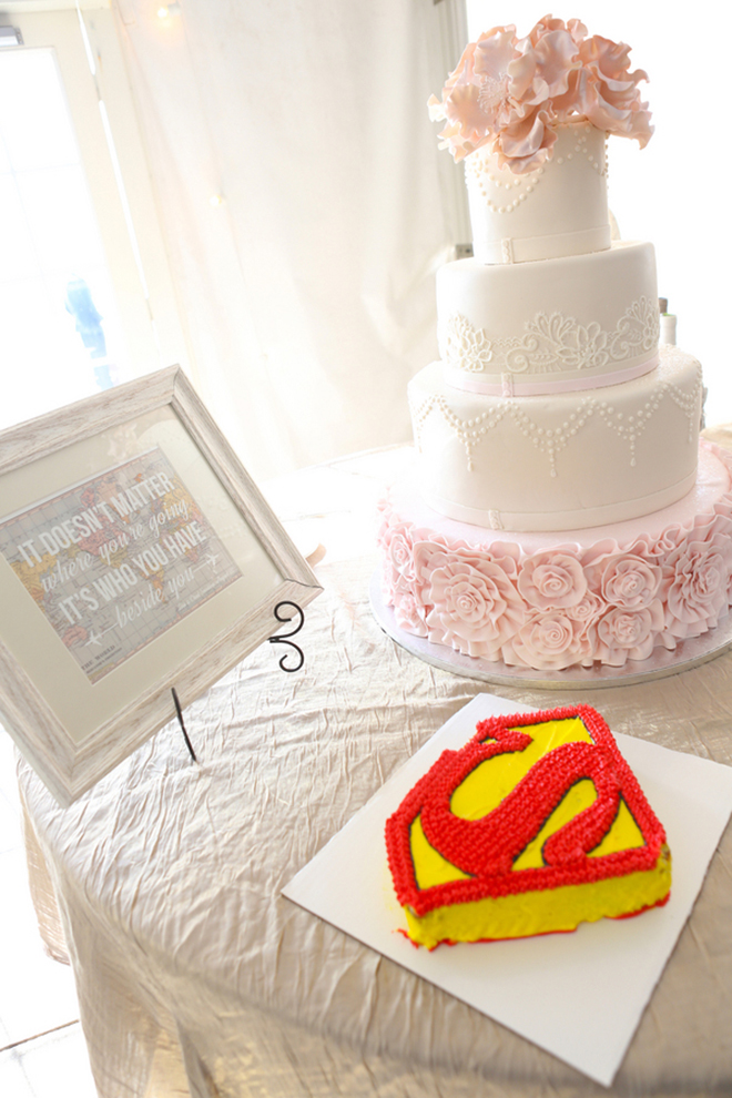Superman wedding cake | Canada joins USA on Lake Erie | Blue Martini Photography