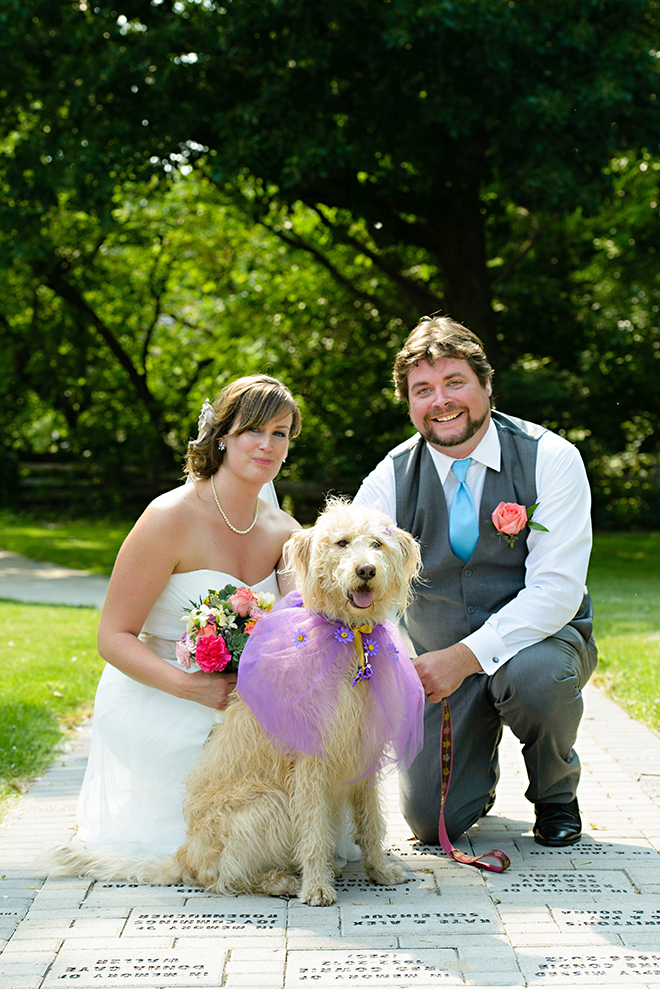 Dogs At Weddings 14 Adorable Dogs At Weddings