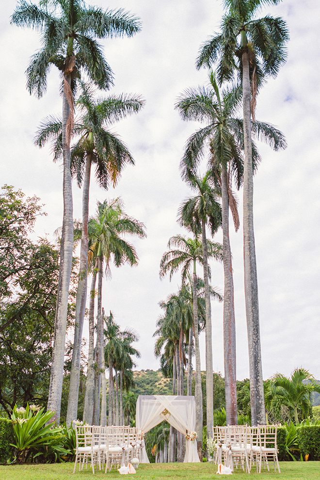 Palm tree lined wedding ceremony | Paradise in Hawaii | Jenna Lee Pictures