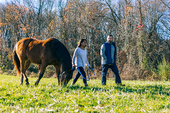 Couple walking horse through field | Rustic Engagement | Anders Portfolio Photography