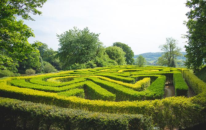 Painswick Rococo Garden Maze   Outdoor Humanist Wedding   Ragdoll Photography