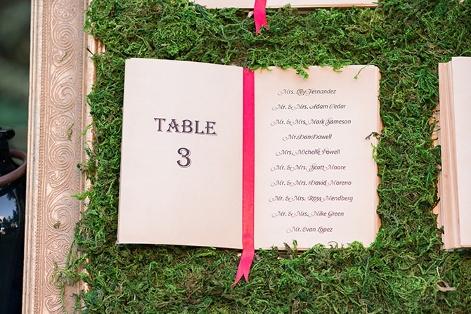 Grass table wedding plan | Beauty and the Beast Wedding | Raelyn Elizabeth Photography