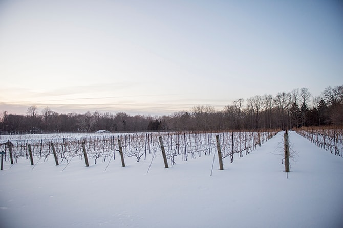 Winter Vineyard | Glamorous Snowy Vineyard Wedding | Tonya Damron Photography