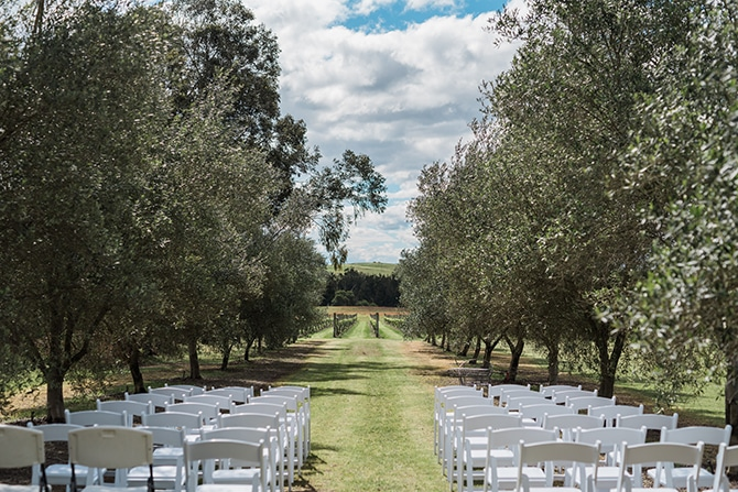 Outdoor vineyard ceremony | Olive Tree Vineyard Wedding Raquelle Loraine Photography
