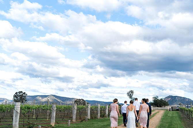 Wedding party in vineyard | Olive Tree Vineyard Wedding Raquelle Loraine Photography