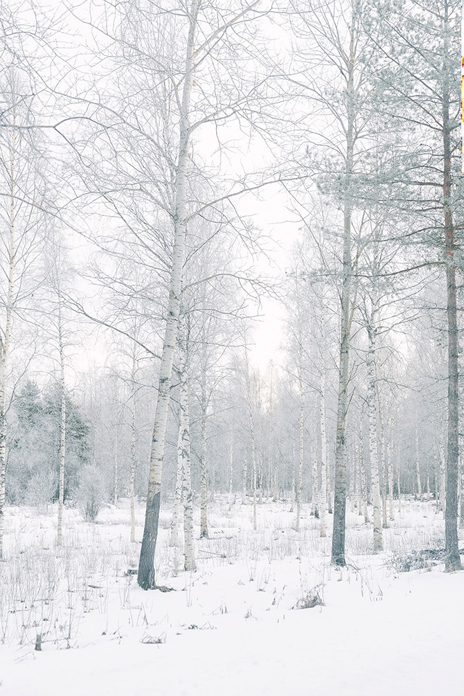 Winter at Koppars | Swedish Winter Wedding Style Linda-Pauline Photo