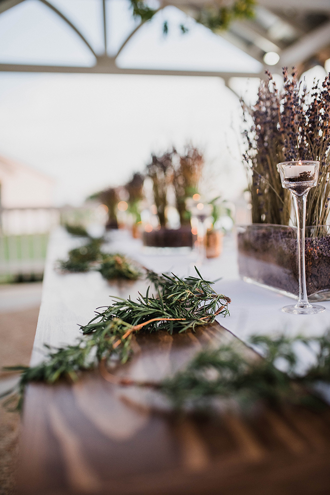 Plants on wedding table | Countryside Sunset Wedding in Texas | Rebecca Chesney Photo