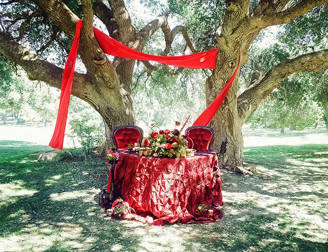 Red Halloween Wedding | Dark Romance at Milagro Winery | Lacey O Photography