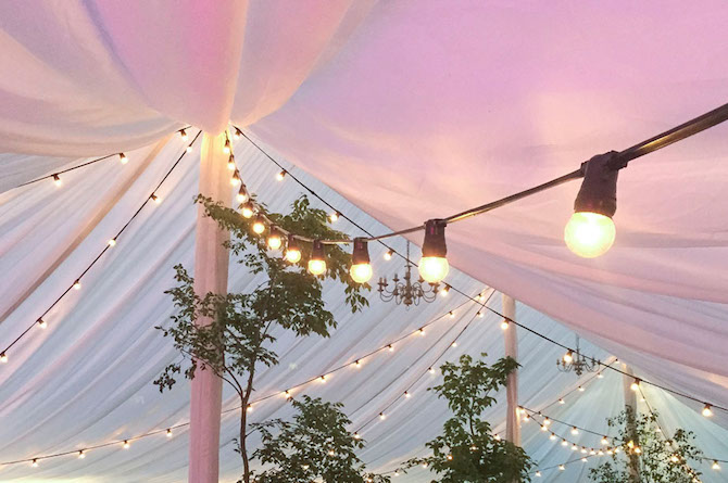 Hanging LED Festoon Lights in Marquee at Wedding