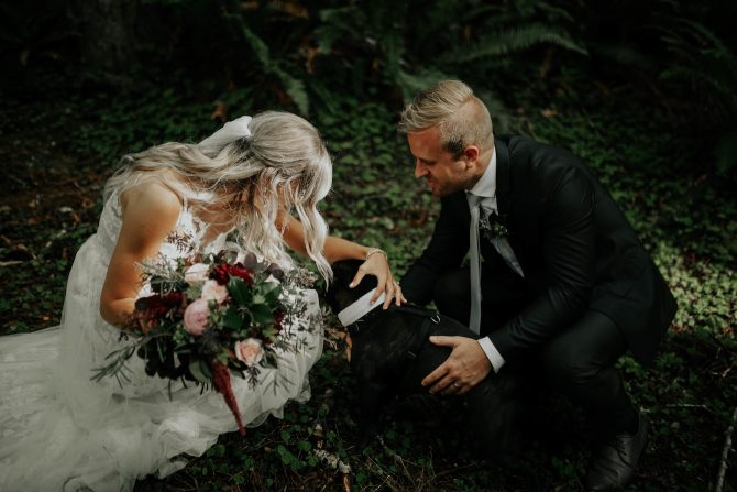 Newlyweds with dog | Real Wedding Janay and Jono
